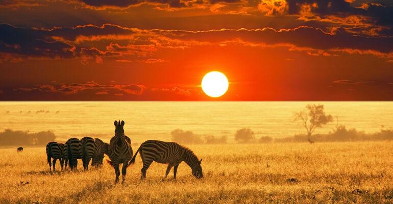 Viaggio di nozze Africa
